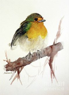 Little Art Print by Jasna Dragun. All prints are professionally printed, packaged, and shipped within 3 - 4 business days. Choose from multiple sizes and hundreds of frame and mat options. Easy Watercolor, Watercolor Animals, Painting & Drawing, Watercolor Paintings, Watercolors, Bird Paintings, Watercolor Trees, Indian Paintings, Watercolor Portraits