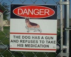 DANGER - The Dog Has A Gun...