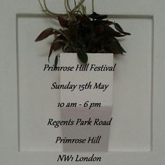 Primrose Hill Festival on 15th May from 10 to 6 pm