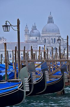 Santa Maria de le Salute (by pedro lastra): the prow of each gondola has a shape representing the family that owns and operates it. Licenses are passed from generation to generation.