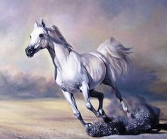 Horse Painting White Horse Horse Oil Painting On Canvas Realism 100 Hand Painted Abstract Animal White Horse Art Oil Horse Oil Painting Canvas Painting Arthur Braginsky 1965 Horse Oil…Read more of Horse Oil Paintings On Canvas Horse Oil Painting, Oil Painting Abstract, Painting Canvas, Oil Paintings, Horse Art, Horse Horse, Pictures Of Jesus Christ, Horse Wallpaper, Horse Portrait