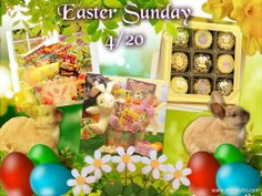 Don't forget your Basket of Goodies for Easter !! Shop Online > Holidays and Occasions > Easter, 4/20 All Orders must be in by 4/11 for on time delivery http://forever.labellabaskets.com/ Please let me know if you have any questions, I am here to assist you with all your gifting needs..