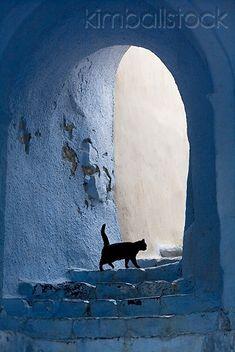 CAT 02 KH0162 01 - Black Greek Island Cat Walking Up White Stairs Under Arch - Kimballstock