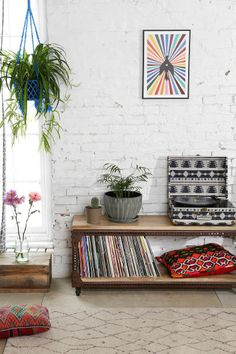 White Painted Brick Walls, Media Console and Hanging Plant