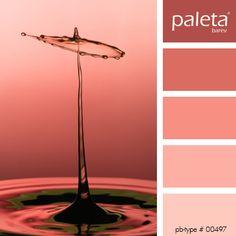 PALETA #00451 - #00500