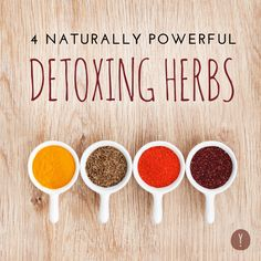 Thinking of starting a spring detox? Here are 4 powerful herbs (along with some common sense tips!) to make the most of the skinny season ahead.