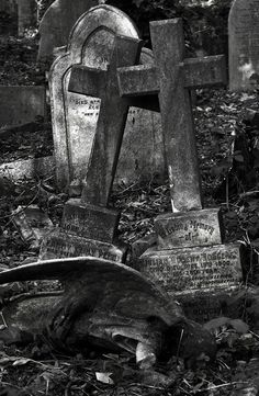 Abandoned cemetery with broken angel Cemetery Statues, Cemetery Headstones, Old Cemeteries, Cemetery Art, Graveyards, Angel Statues, Highgate Cemetery, Spooky Places, Old Churches