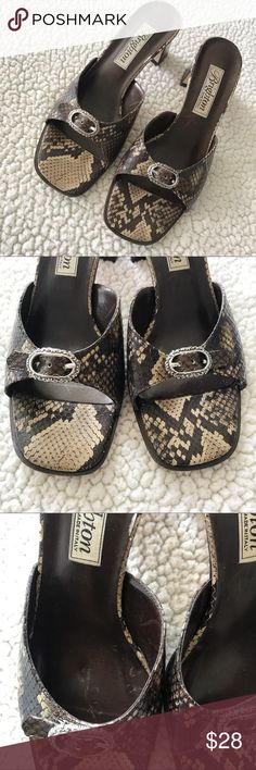 Brighton Italian Leather Slip On Heeled Sandals Gorgeous and classic Brighton chunky heels. These Slip On sandals have a beautiful snake skin inspired leather with a fantastic buckle at the toe. Good used condition. Wear on bottoms and soles but none to the part you can actually see and no wear on the heel. Size 8.5. Brighton Shoes Sandals