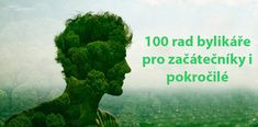 100 rad bylinkare pro zacatecniky i pokrocile The 100, Herbs, Health, Alcohol, Health Care, Herb, Salud, Medicinal Plants