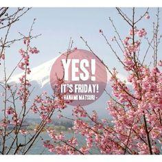 """Durante estos días en Japón se celebra en """"Hanami Matsuri"""", festival en el se contempla como cae la flor del cerezo en símbolo de nueva vida. Quizá nosotros empecemos una nueva etapa también."""" #HanamiMatsuri #Japon #Japan #cerezo #itsfriday #viernes #friday #hanami #yesitsfriday"""