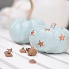 Ach du lieber Herbst.....wir machen's uns schön! Wollt ihr mehr sehen? Dann kommt schnell zu uns!! #newblogpost  #linkimprofil . . . #diy #herbstdeko #herbstzeit #autumn #fall #kürbisliebe #dekoration #homedecor #pumpkin #creative #creativlifehappylife #creativityfound
