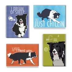 Border Collie Magnet Set - Border Collie Magnets