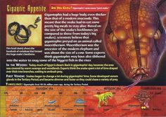 Name: Gigantophis Category: Monsters of the Past Card Number: 114 Front: Gigantophis Monsters of the Past Card 114 front Back: Gigantophis Monsters of the Past Card 114 back Trading Card: Giant Snake, Mysteries Of The World, Wild Creatures, Cryptozoology, Animal Species, Big Meals, Animal Cards, Staying Alive, Prehistoric