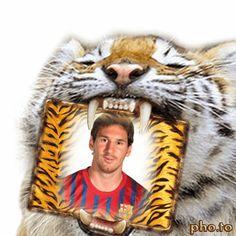 Fotomontaje animado de un tigre