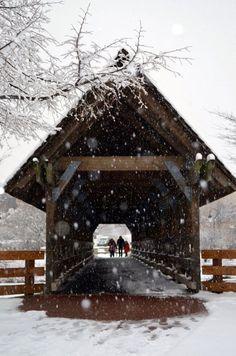 Snow covered bridge in Naperville, Illinois ~ Photo by. Black Christmas, Christmas Cover, Christmas Prayer, Winter Scenery, Winter Colors, Ohio, Old Bridges, Winter Magic, Over The River