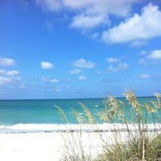 Boca Grande, Florida -- rented a condo that was literally steps from the beach.  This is a great vacation spot.