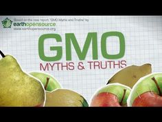 Genetically Modified Organism (GMO) - Myths and Truths