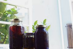Herbal Honey and elixirs      http://cauldronsandcrockpots.files.wordpress.com/2010/07/img_5426.jpg