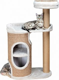 Trixie Falco Condo With Scatching Post for Cats, H Diy Cat Tree, Cat Towers, Cat Scratching Post, Cat Condo, Cat Room, Pet Furniture, Engineered Wood, Crazy Cats, Sisal