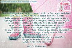 Ahelyett, hogy bánkódsz a rossz idő miatt, fedezd fel az eső szépségeit és csodáit! www.lelekolvaso.hu - Ábrahám Adrienn