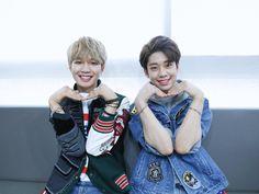 MXM Football Senior Pictures, Im Youngmin, Fraternal Twins, Diamond Girl, Kpop Groups, Korea, Brand New, Disney Princess, My Love