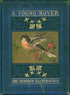 A young rover, or, A boy's adventures on sea and land, writer unknown. 100 Illustrations.