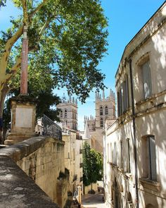 Vue sur la CATHÉDRALE SAINT PIERRE . La cathédrale Saint-Pierre de Montpellier est la cathédrale catholique de Montpellier dans l'Hérault. Située dans l'écusson cœur de la vieille ville c'est le monument de style gothique le plus important de la ville de Montpellier et la plus grande église de l'ex-région Languedoc-Roussillon. . . VISIT'INSOLITE visite guidée . Montpellier (34) _________________ #visitinsolite #montpellier #patrimoine #culture #artisanat #art #artcontemporain #gastronomie…