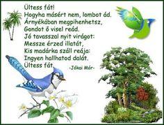 derera - Környezet - Dc1b85035ba5b0616871d2bbb84cce1e Tree Day, Free Online Jigsaw Puzzles, Google, Tree Structure