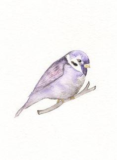 Purple Sparrow / 5x7 Watercolor Print