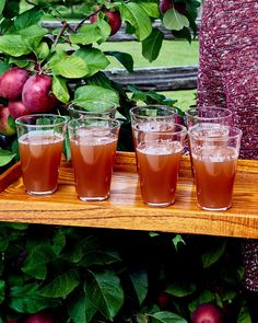 Apple Cider | Yes, y