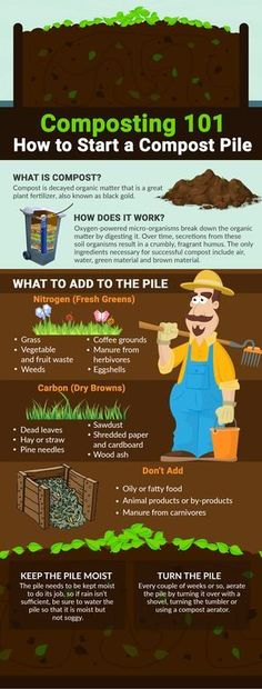 House Plant Maintenance Tips Starting A Compost Pile Doesn't Have To Be Difficult. It Really Can Be Done In Just A Few Simple Steps. Navigate To Get Tips On Where To Find Free Compost Materials, Regardless Of Where You Live, Plus An Awesome Video On How Garden Types, Diy Garden, Garden Projects, Fruit Garden, Shade Garden, Herb Garden, Garden Beds, Permaculture, Organic Gardening