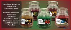 Holiday scents 15% off! www.barbz.scent-team.com