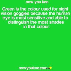 Green Eyes On Pinterest 17 Pins