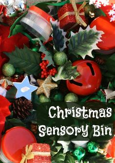 Tips on creating a Christmas Sensory Bin for the kids that both sighted and visually impaired children can enjoy and learn from.