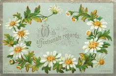 """Daisies, """"With affectionate regards"""""""