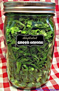 A Slice of Texas : DEHYDRATED GREEN ONIONS