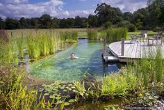 Explore our Swimming Pond and Natural Swimming Pool gallery, showcasing the environmentally-friendly alternative to Swimming Pools.