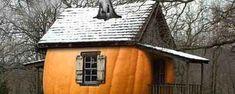 Squash House                                                           La casa di zucca e la vecchia strega Perfidia