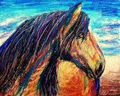 Marsh Tacky Wild Horse