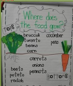 Tops and Bottoms book f/u chart.  Perfect for plants unit!