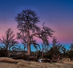 Vedauwoo Sundown - photograph by Steven Reed. Fine art prints and posters for sale.  #stevenreed #landscapephotography #vedauwoo