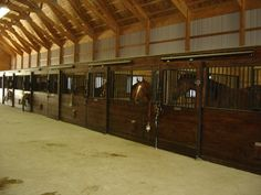 Awesome horse barn with lots of stalls (with awesome horses in them of course).