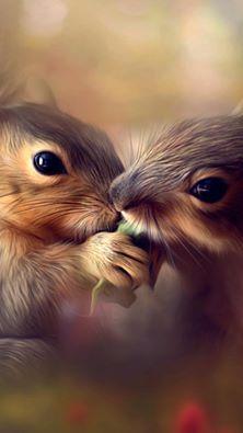 So precious! These squirrels share a treat.