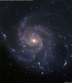 Brightest supernova best seen from Sept 7 thru Sept 12....we're trying with the telescope tonight