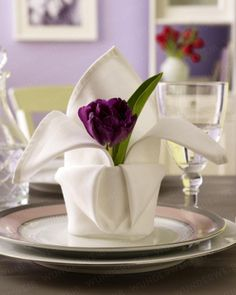 Tulip Blooms on your table