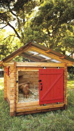 Contemporary Coops. Love the barn door.