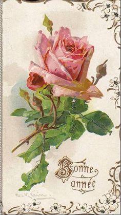 Catherine Klein by Cıgdem Bakırcı Art Floral, Floral Vintage, Art Vintage, Vintage Ephemera, Vintage Flowers, Vintage Postcards, Vintage Images, Vintage Prints, Catherine Klein