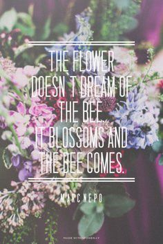 The Flower doesn`t Dream of the Bee. It Blossoms and the Bee comes. - Marc Nepo