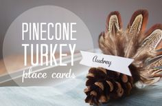 [dandee]: Pinecone Turkey Place Cards.