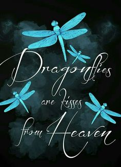 Dragonflies are kisses from heaven